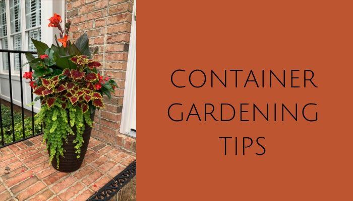 Container Gardening Helpful Hints